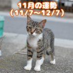 2018年11月の九星の運勢(11/7~12/7)